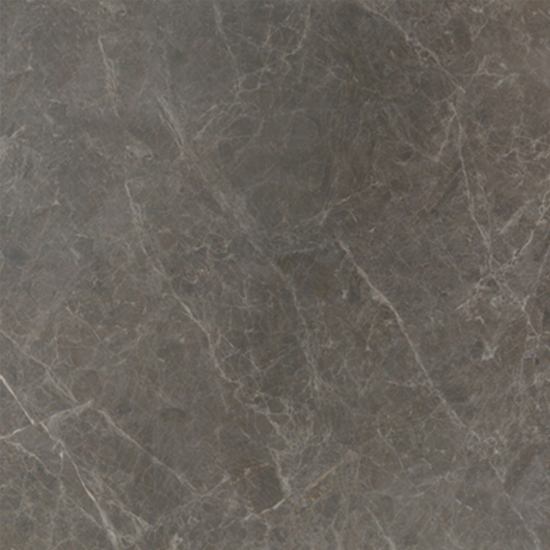 东鹏瓷砖全抛釉客厅卧室地砖CFG802105(800X800)
