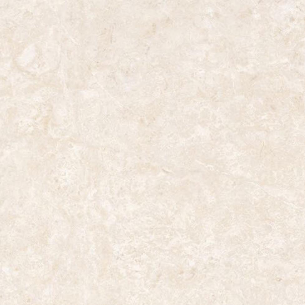 金时代瓷砖白玉兰金刚大理石GD8905(800*800)
