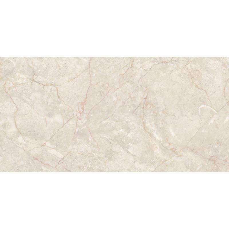 冠珠瓷砖瓷片600*300 GQI62025