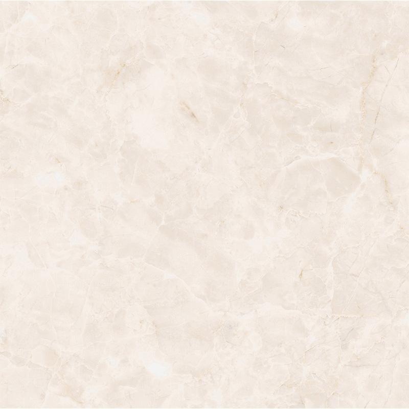 新中源瓷砖瓷片300*300 5D1E3027DG