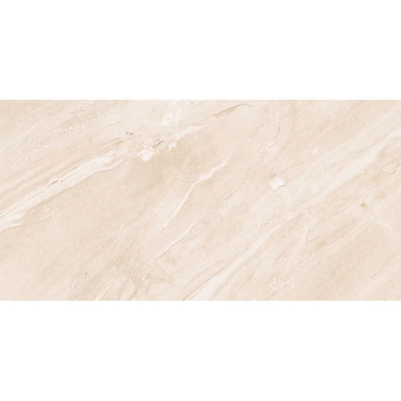 新中源瓷砖瓷片300*600 5D1E6026