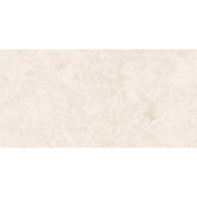 新中源瓷砖瓷片300*600 5D1E6027