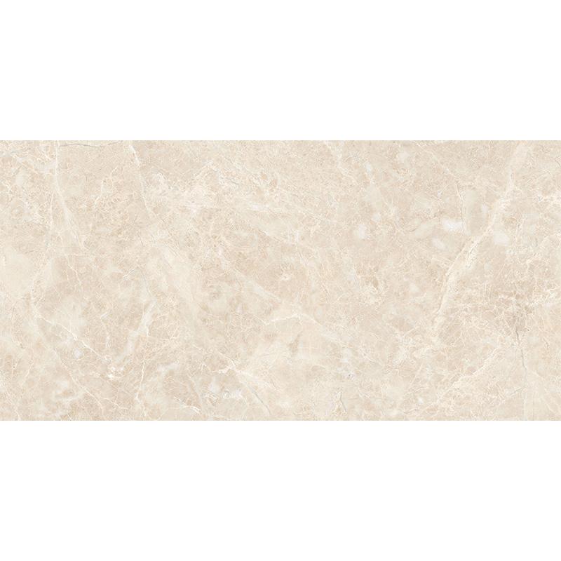 新中源瓷砖瓷片300*600 5D1E6028